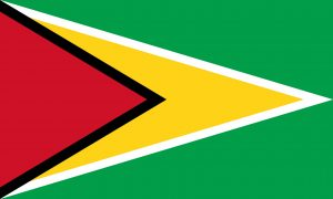 guyana bandera