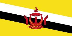 brunei bandera