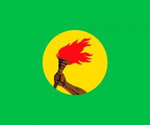 zaire bandera