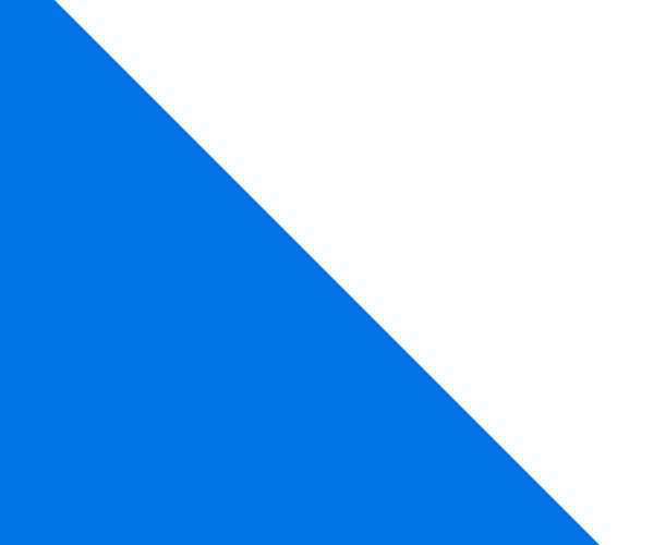 zurich bandera