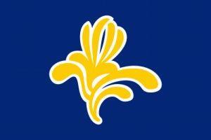 bandera anterior de bruselas