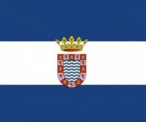 jerez bandera oficial